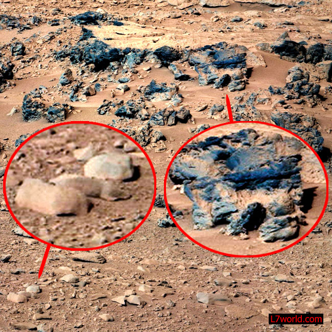 Martian Mouse Caught on Camera