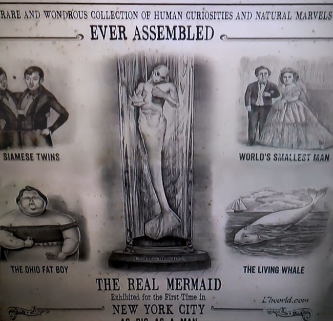 P.T. Barnum Real Mermaid Flyer (Animal Planet - Mermaids The New Evidence)