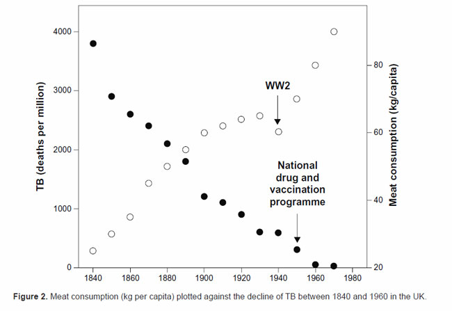 TB tuberculosis to meat consumption correlation