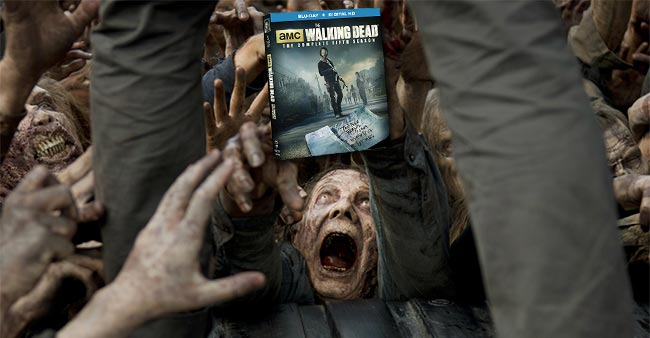 Win Walking Dead DVD and meet the cast